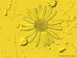 Textile design_Daisy Gold